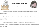Cat and mouse | Recurso educativo 42830
