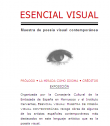 Esencia visual | Recurso educativo 59443