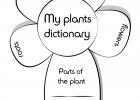 Ficha my plants dictionary - Dibujalia. Dibujos para colorear.  - Profes - Ciencias - Ficha my plants dictionary | Recurso educativo 89199