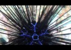 Sea Urchin Facts | Recurso educativo 778378